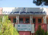 شمارش معکوس مرخص شدن اولین مورد کرونا در هرات