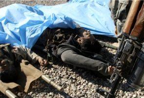 ولسوال طالبان در لاش و جوین فراه کشته شد