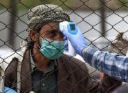 شمار مبتلایان کرونا در هرات ۱۴۶۱ نفر رسید