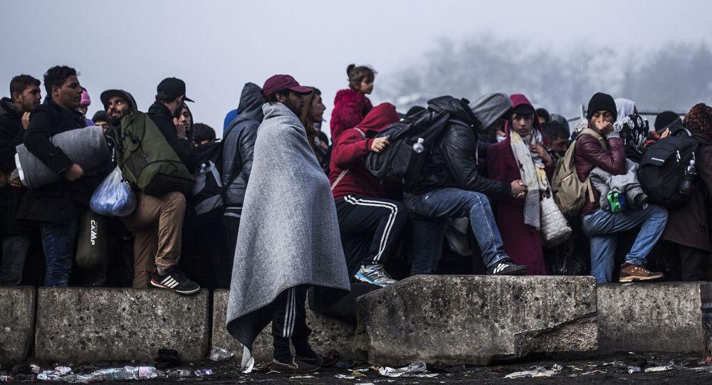 شش و نیم میلیون شهروند افغانستانی مهاجر هستند