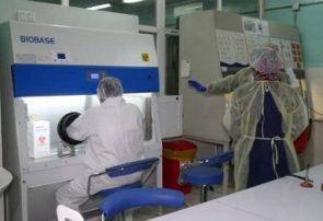 ثبت بلندترین آمار قربانیان ویروس کرونا در افغانستان/۴۲ بیمار کرونایی جان باختهاند