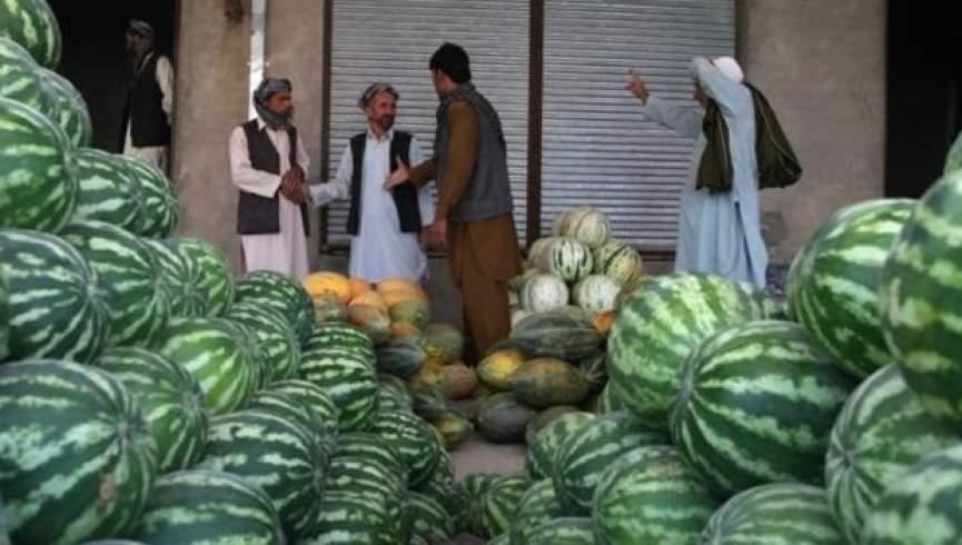 محصولات زراعتی فراه بازار فروش مناسب ندارد
