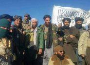 زد و خورد دولت و طالبان در غور/هفت کشته طالبان و چهار کشته دولتی