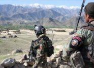 درگیری طالبان و نیروهای امنیتی در دو ولایت افغانستان/۱۱کشته و ۱۱ زخمی از گروه طالبان