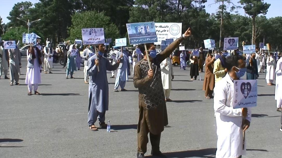 سرپرست وزارت صحت باید از پزشکان افغان چاپان عذر خواهی کند