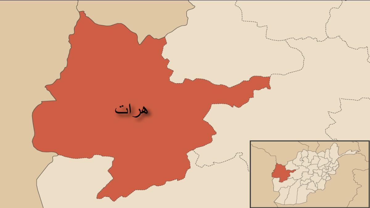 مردی که قصد ترور یک عالم دینی را در هرات داشت گرفتار شد