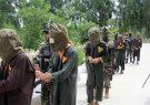 امنیت ملی هرات ۲۱۹ نفر را در چند ماه اخیر دستگیر کرده