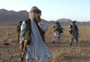 کشته شدن پنج تن از طالبان در پشتون زرغون هرات