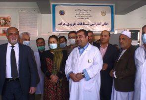 ۳۰ میلیون افغانی از بودجه کرونا در هرات اختلاس شده است