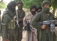 هشت کشته و شش زخمی از طالبان در غور