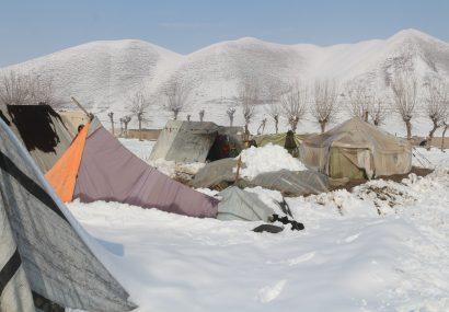 حدود ۱۰ تن از مهاجران دچار یخ زدگی شدهاند