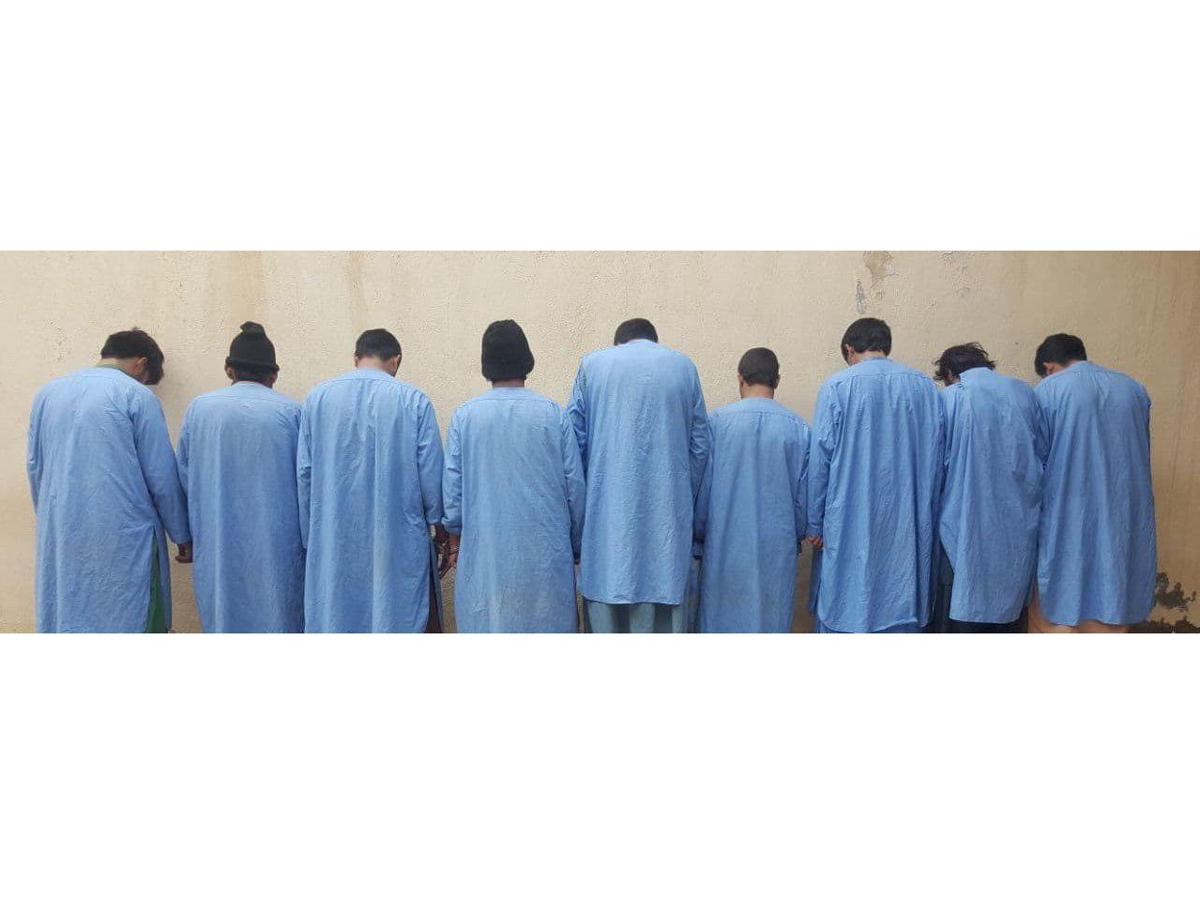 دستگیری ۹ تن به ظن جرایم مختلف در هرات