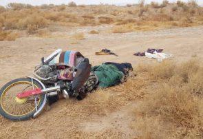 پولیس هرات یک تروریست حرفوی را از پا درآورد