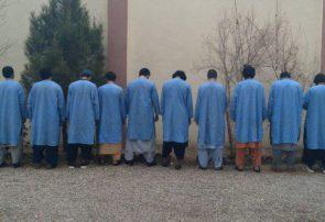 ۱۶ تن به ظن جرایم مختلف در هرات بازداشت شدند