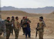 چهار کشته از طالبان در ولسوالی چشت هرات