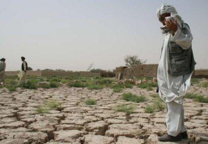 بیشبینی شده در صورت خشکسالی در بادغیس حدود ۴۰ هزار خانواده بیجا میشوند