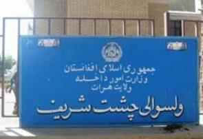 هشت جنگجوی طالب در هرات کشته شدند