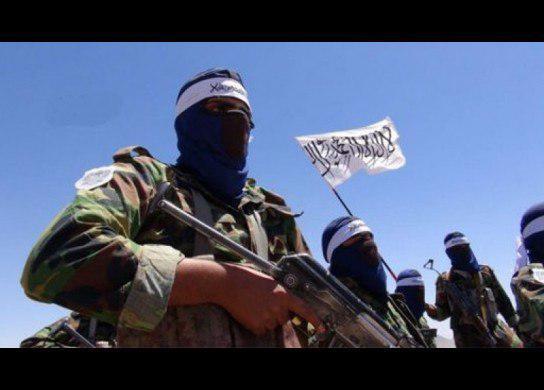 چهار جنگجوی طالب در فراه کشته شدند