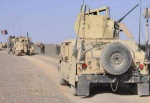 طالبان در هرات ۱۲ کشته و ۱۹ زخمی دادند