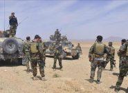 طی ۱۰ روز در شیندند هرات ۶۳ جنگجوی طالب کشته شدند