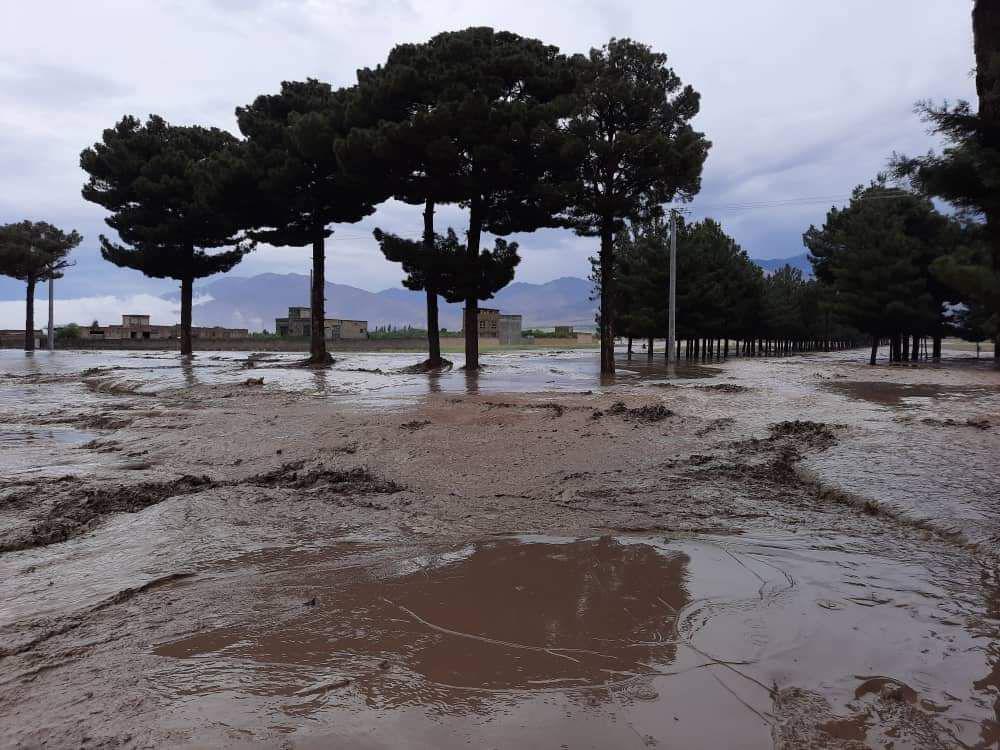 ۱۲ کودک در اثر سیلابها مفقود شدند
