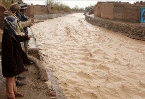 بارانی که دو ولسوالی هرات را در خود غرق کرد
