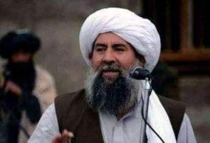 ملا منان نیازی سرگروپ شاخه انشعابی طالبان در هرات در حملهی زخمی شد