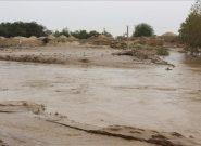 سیلاب در ادرسکن هرات خسارت مالی و جانی به بار آورد/۱۲ تن جان باختهاند
