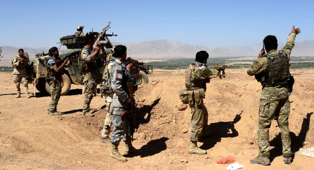 ۱۲ جنگجوی طالب در هرات کشته شدند