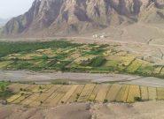 آشوب جنگ در فراه؛ نبرد شدید بین دولت و طالبان در ولسوالی اناردره