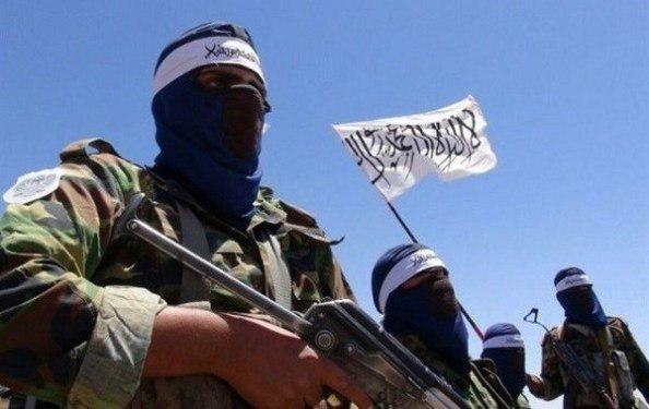 بازداشت یک عضو قطعه سرخ طالبان در هرات