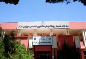 در درگیریهای دیروز هرات ۴۰ غیرنظامی زخمی شدند