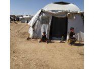 بیجاشدگان کمپ مهاجرین غور با همکاری موسسات به شهر منتقل میشوند