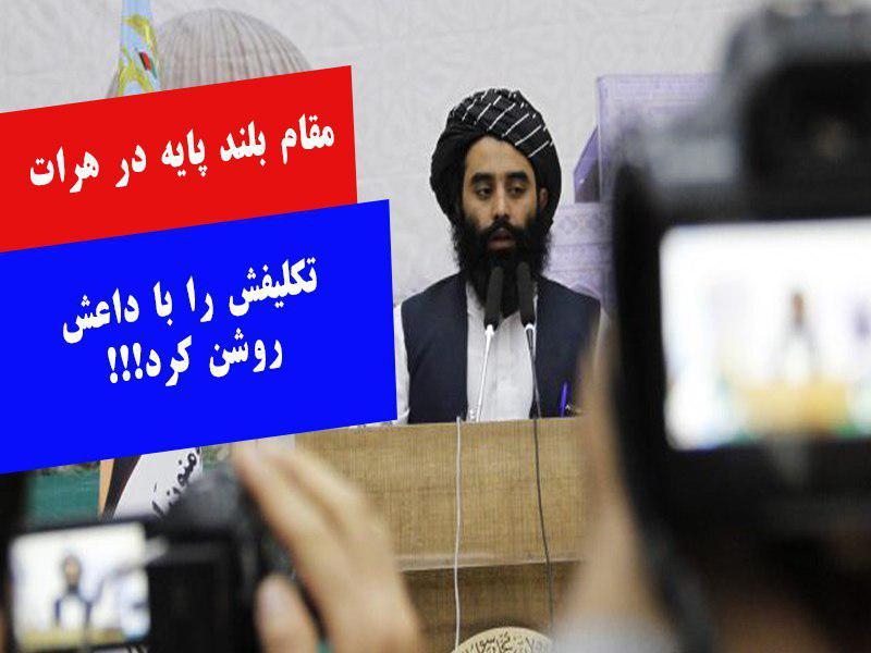 مولوی عمار مهاجر، معاون والی هرات داعش را خوارج و تروریست خواند!